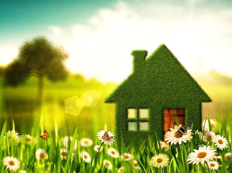 L'habitat éco-responsable ? Frappez donc à la porte d'ACE Environnement !