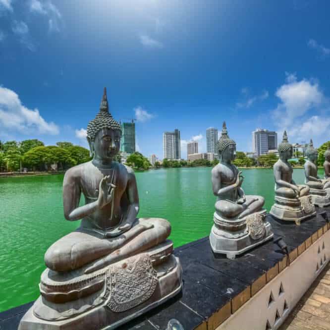 Les essentiels à découvrir au Sri Lanka